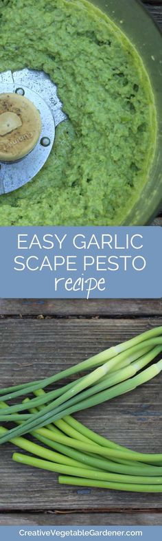 Removing your garlic scapes helps grow bigger garlic. And you can make a delicious pesto!