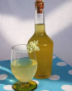 Пригответе си напитка за дълголетие и здраве от сушен бъз и мед   Здравни съвети Framar.bg