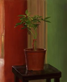 ArtStation - House Plant, Alexis Somes