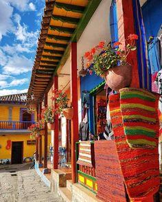 Latin America, South America, Colombia Travel, Honduras, Brazil, Destinations, Change, Landscape, City
