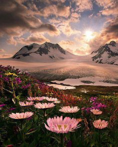 Beautiful Alaska, landscape photo, wildlife pictures, amazing nature images. See more at: http://www.lifeposters.org/nature-images