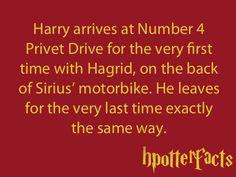 Harry Potter Facts Hagrid