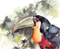 ORIGINAL Bird  Watercolor Painting, Toucan Painting, Tropical Bird Watercolour Art by CanotStop on Etsy