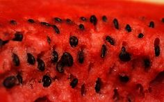Did you know that watermelon seeds are very healthy? They contain fiber that is essential for the functioning of the digestive tract, help in case of parasites, and are also excellent as antibiotic assets. Watermelon seeds contain citrulline, which is. Summer Salad Recipes, Summer Salads, Roasted Watermelon Seeds, Healthy Drinks, Healthy Recipes, Eating Healthy, Healthy Eats, Healthy Foods, Vegetarian Recipes