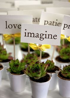 so cute, flats of annuals or succulents for like $10 at walmart and pots. good wedding favor