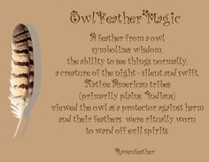 Owl feather magic                                                                                                                                                     More