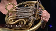 Musical Concepts - French Horn