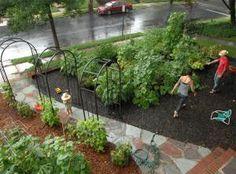 Front Yard Edible Garden Ideas rautatienomenapuu - google-haku   piha   pinterest   google