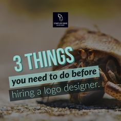 3 things you need to do before hiring a Logo Designer