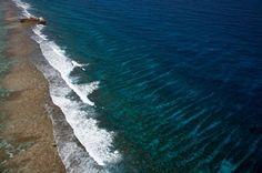 Shipwreck, lighthouse Reef, Belize Distict, Belize (17°24' N, 87°28' W).