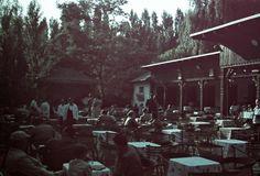 Máriaremete, kertvendéglő a Kisboldogasszony Bazilika mellett 1940. Capital Of Hungary, Budapest, Spa, Europe, Landscape, Architecture, Outdoor Decor, Arquitetura, Scenery