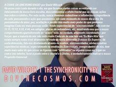 """★DAVID WILCOCK...""""A CHAVE DA SINCRONICIDADE"""""""