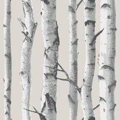 WallPOPs 30 sq. ft. Birch Tree Peel and Stick Wallpaper-NU1650 - The Home Depot