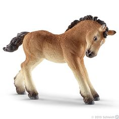Ardennes foal
