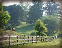The countryside in Winston Salem North Carolina ~ Photograph  by Terry Kirkland Cook