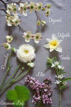 Blooms in Seasons - April // Sacramento Street // Natalie Bowen Designs