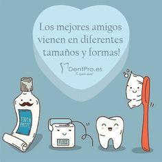 Los Mejores amigos vienen en diferentes formas y tamaños #SaludDental #dental #odontología #clinicadental #dentpro #ortodoncia