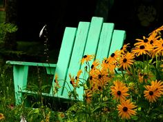 Nice contrast of color against the Black-Eyed Susans