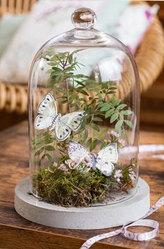Butterfly cloche with ferns Glass Dome Display, Glass Domes, Butterfly Party, Butterfly Crafts, Cloche Decor, Deco Nature, The Bell Jar, Deco Floral, Glass Terrarium