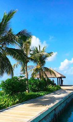 A hotel to remember: Velassaru Maldives - The Velassaru Maldives is great and has everything one needs and more! From its lovely spa to sports to its food, it's a hotel to return to again and again.
