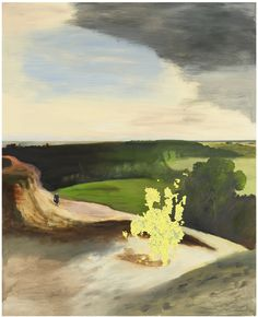 Alun Williams / Hester and Barnet Rynders…, 2006 - 2007