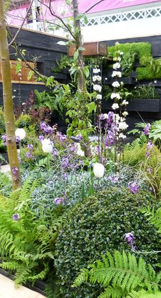 123 best young gardeners of the year images collage colleges rh pinterest com