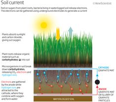 soil current infographic or at AgSource Laboratories we like to call it the CEC Cation Exchange Capacity here is a printable info sheet  http://documents.crinet.com/AgSource-Cooperative-Services/Agronomy/F-04263-12---CEC-FS-GENERIC.pdf