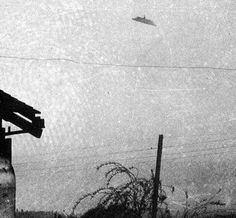 The Trent UFO Photos - McMinnville, Oregon - May 11, 1950