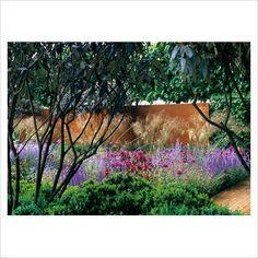 Viburnum rhytidophyllum pruned high by Tom Stuart-Smith Small Trees For Garden, Garden Trees, Tom Stuart Smith, Smith Gardens, Sun Loving Plants, Border Plants, Home Garden Design, Garden Show, Formal Gardens