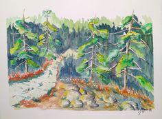 Sentiero tra i pini
