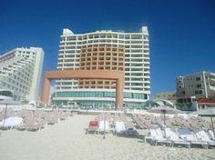 Beach Palace: lounge chairs on beach