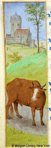 Zodiac Sign: Taurus | Book of Hours | France | ca. 1480 | The Morgan Library & Museum