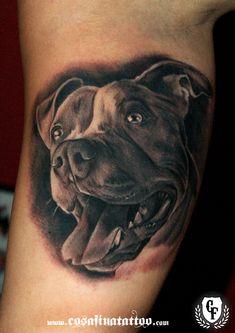 pit bull sugar skull - Yahoo Image Search Results