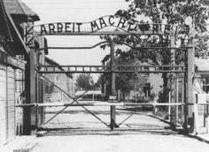#Aushwitz #concentration #camp #history #world #war