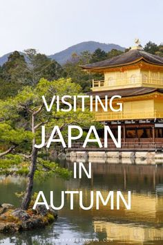 What it's like travelling in Japan in Autumn with the pros and cons of visiting during that time. #Japan #Autumn Japan Travel Guide, Asia Travel, Time Travel, Best Places To Travel, Cool Places To Visit, Travel Ideas, Travel Inspiration, Japanese Travel, Backpacking Asia