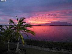 8900 Kamehameha V Hwy, Kaunakakai, HI 96748....Wish I could live there!