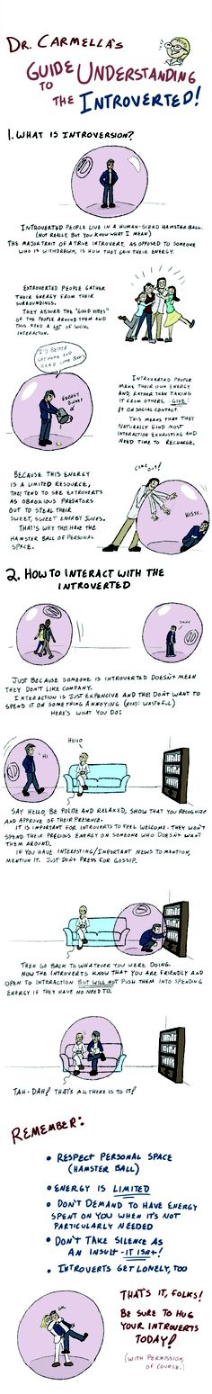 Guide to Understanding the Introverted: Basically. Please repin for the sake of introverts everywhere!