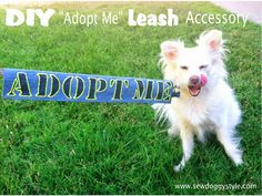 "Sew DoggyStyle: DIY ""Adopt Me"" Leash Accessory- great project for some Setacolor 3D paint- http://www.dharmatrading.com/paints/setacolor-3d-paint-in-tubes.html?lnav=paints.html"