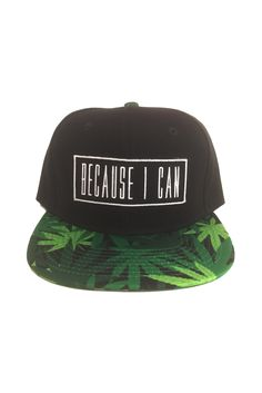 91 Best snapback images  64b5accee4df