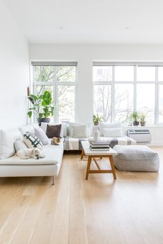 House Tour: A Minimal, Modern, Bright Brooklyn Rental / Apartment Therapy Casual Living Rooms, Comfortable Living Rooms, Living Room Grey, Living Room Modern, Living Room Designs, Living Room Decor, Rv Living, Living Area, Apartment Therapy