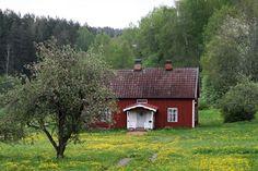 Spring in Djursdala, Småland