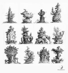 The giant hollow tree by Nicolas Weis Vegetal Concept, Bg Design, Prop Design, Stage Design, Dragons, Nature Drawing, Drawing Trees, Film D'animation, Matte Painting