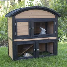 Boomer & George 2 Story Rabbit Hutch with Rounded Roof