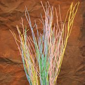 Easter Yangani Branches