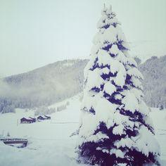 ★★★ Snow in #Livigno !  visit www.livignolife.it