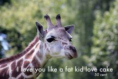 Love You - 50 cent rap thug art photography funny meme fine art print og lyrics hip hop gangsta art parody motivational absurd cake giraffe