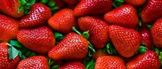 Cultivar fresas huerto en casa | EcoHortum