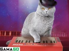 Keyboard Cat Scratch Pad on sale @Coupaw