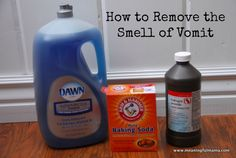 Removing vomit smell from fabric