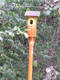 How to Build a Birdhouse with PVC Pipe from DIYnetwork.com